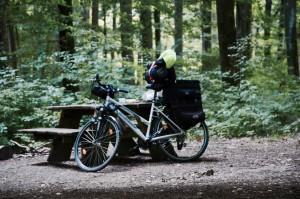 Wildcampen Dänemark Deutschland Wald Fahrrad Fahrradtour 1000km mehrtägig mehrwöchig Gepäckträger Taschen
