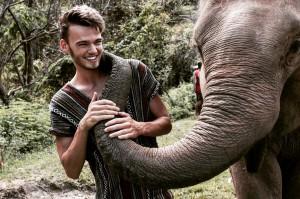Elefanten Kuss Thailand Chiang Mai Jungel